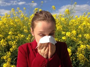 Allergies Lakelands Acupuncture Penticton